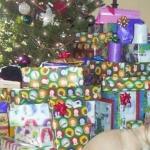 Schei� auf Weihnachten