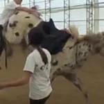 Aufs Pferd springen