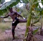 Bananenbaum vs. Muay Thai K�mpfer
