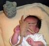 Das Alien- Baby