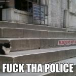 Kriminelle Katze