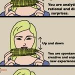 Maiskolben - Pers�nlichkeitstest