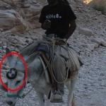 Neues BMW Modell gesichtet?