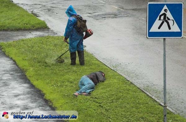Rasenmahen Mit Hindernissen